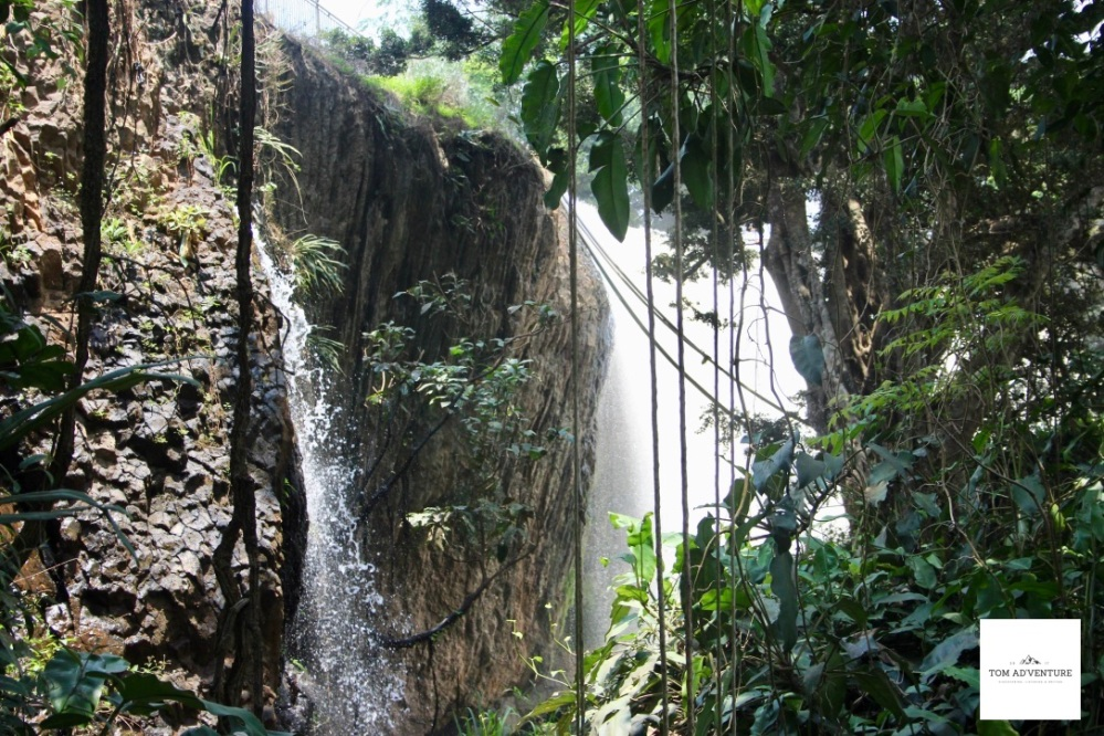 Elephant Waterfall in Dalat- Vietnam