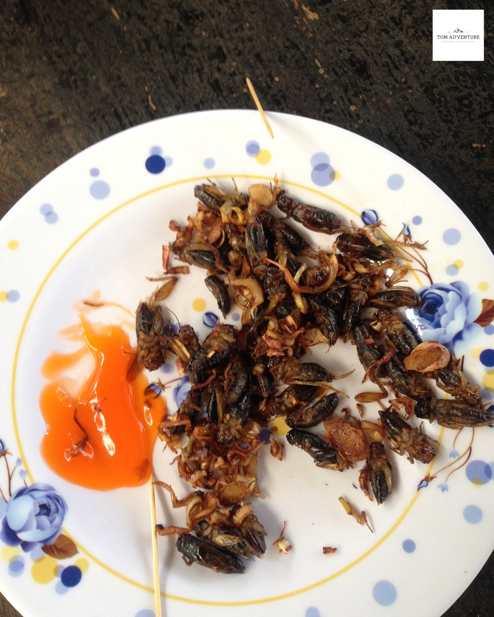 Insects to eat in Dalat